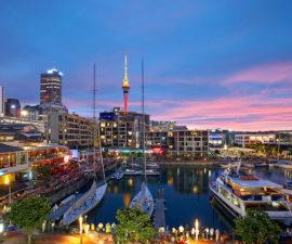 Auckland Yeni Zelanda