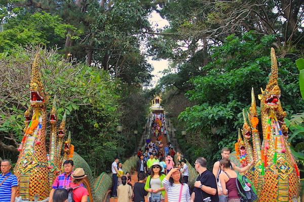 Chiang Mai Aktivite